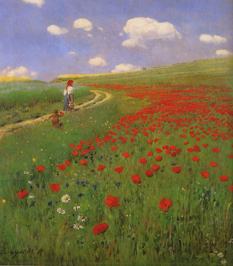 Tableaux sur toile, reproduction de Merse, A Field Of Poppies, 88x79cm