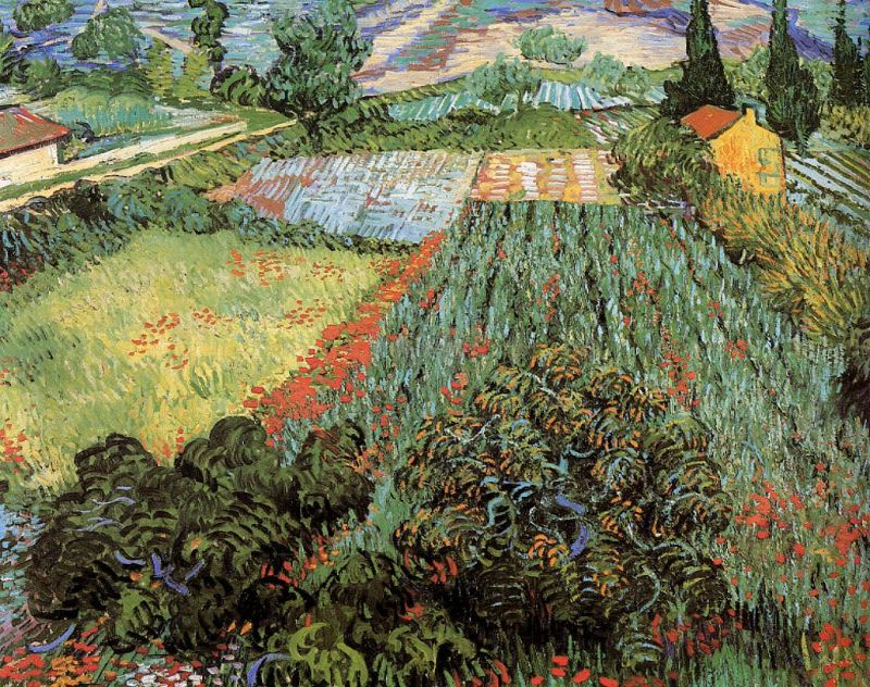 Tableaux sur toile, reproduction de Van Gogh, Field With Poppies, 71x91cm