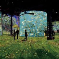 L'Atelier des Lumières expose Van Gogh, après son succès avec Gustav Kilmt